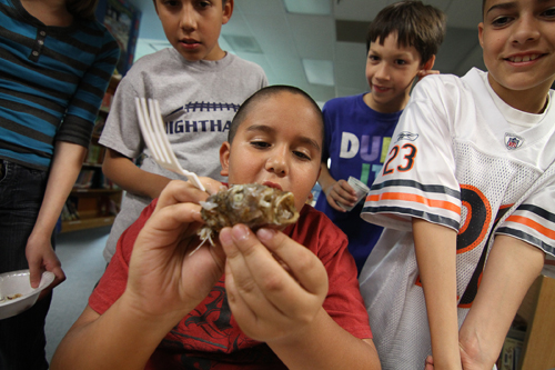 Discovery Day and Aquaponics at Davis
